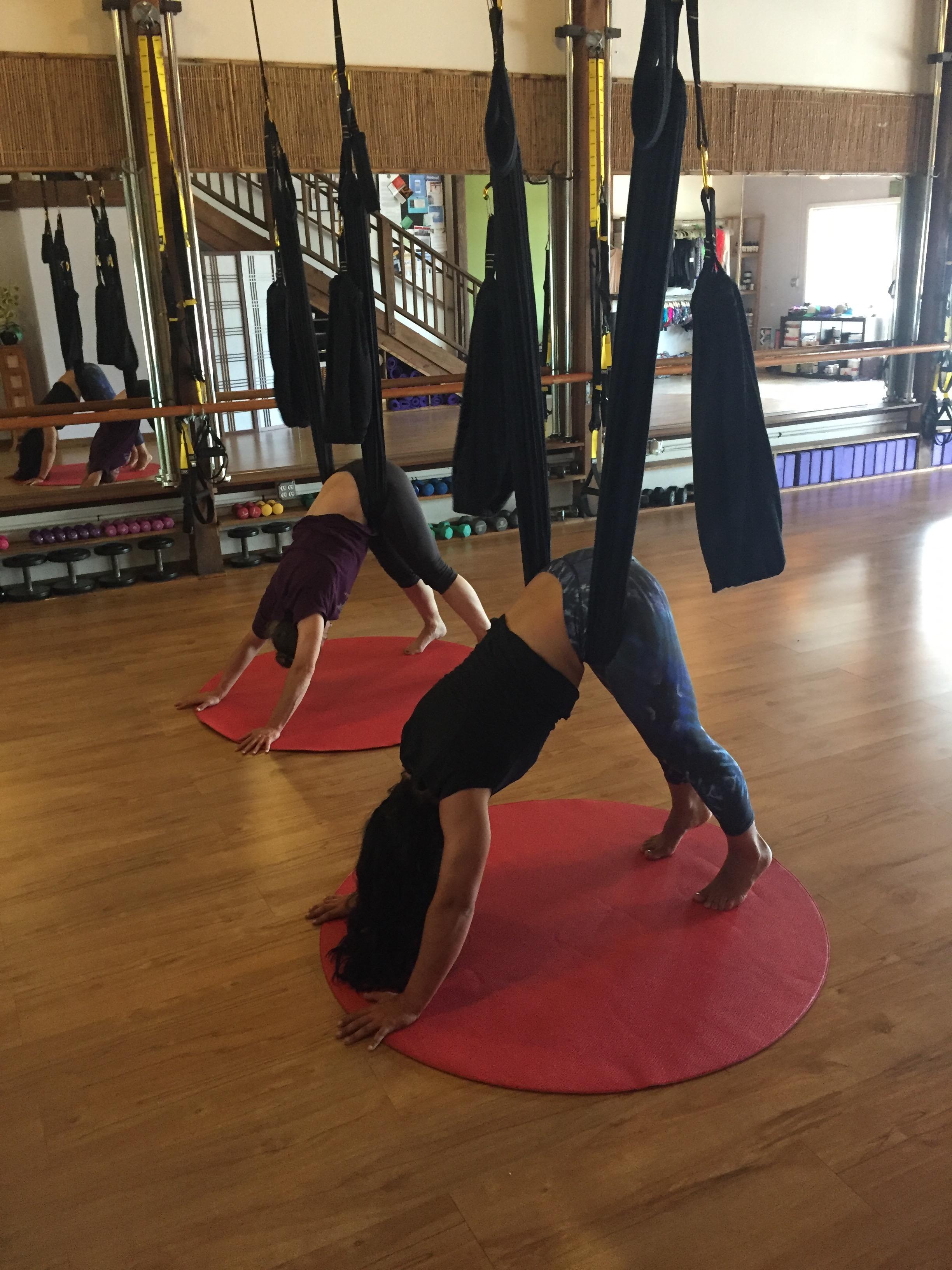 Aerial Yoga Play Teacher Training The Pole Room
